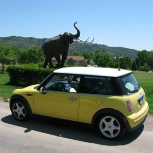 Bessie and a Mammoth.
